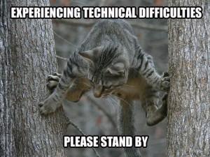 tech difficulties cat