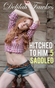 Hitched to Him Part 5-Saddled
